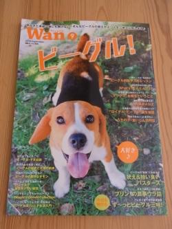 wan2018年9月号表紙