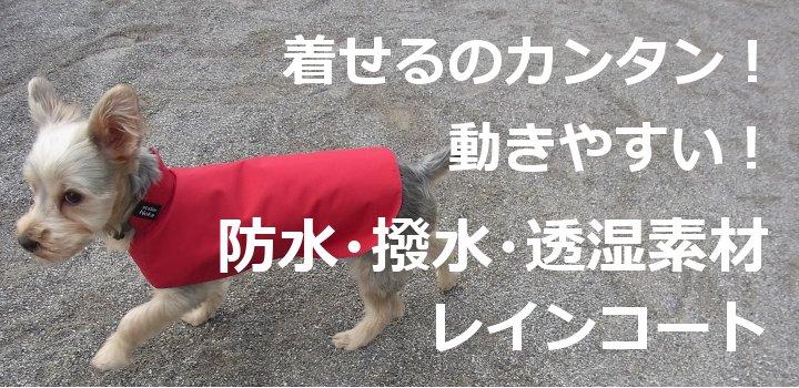 犬用レインコートのatelier Noka 夏用トップイメージ